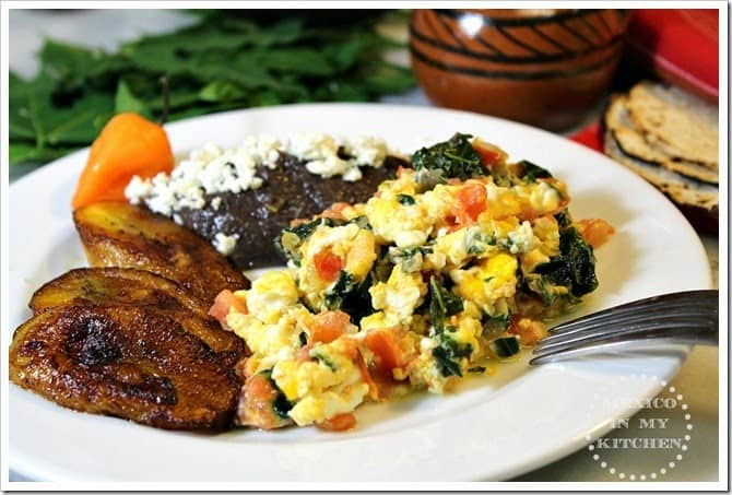 Scrambled Eggs With Chaya A Super Food From The Mayans Mexico In My Kitchen