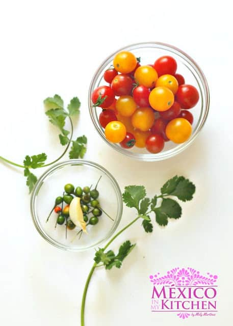 Raw sauce cherry tomatoes salsa | Ingredients