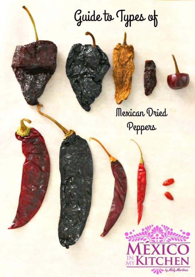 Guide of mexican dried peppers