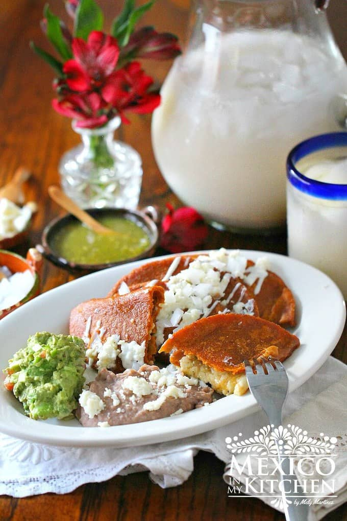 Enchiladas Potosinas recipe 1b