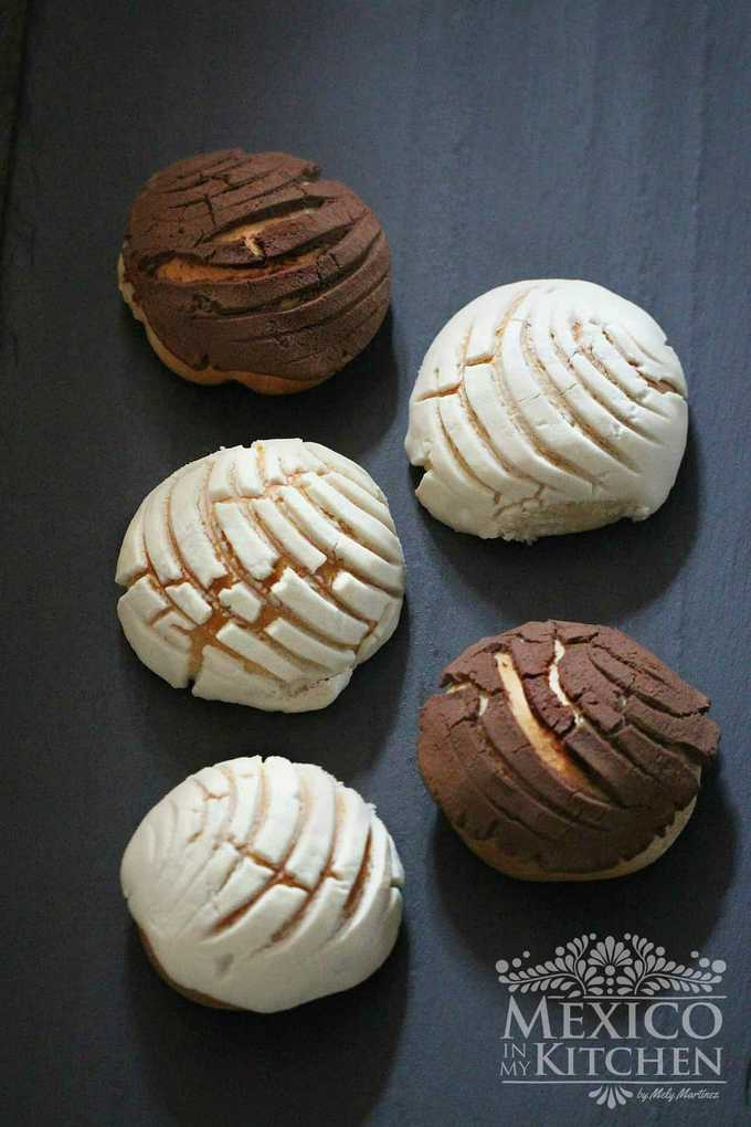 Mexican pan dulce conchas recipe vanilla - chocolate - 1