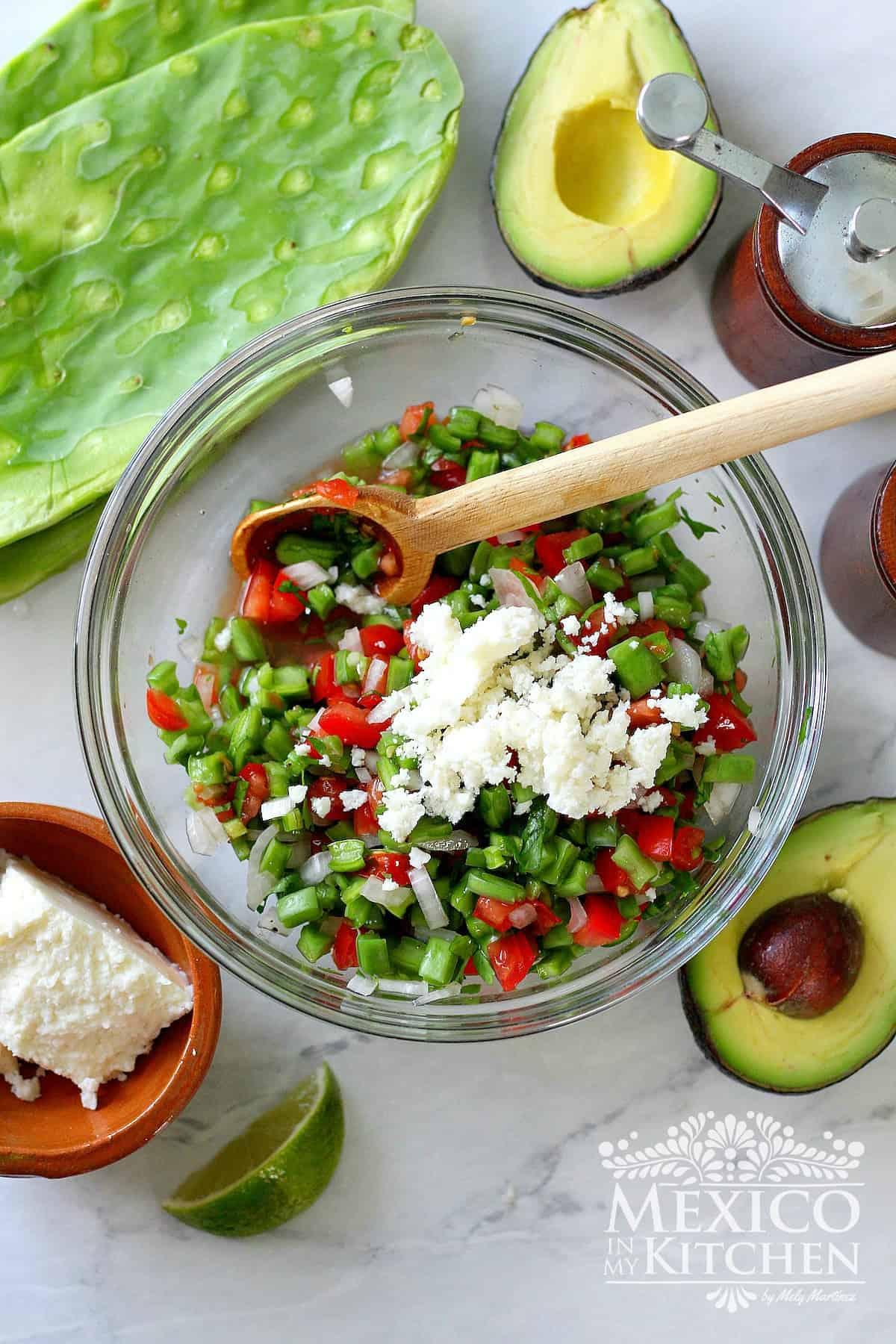 Raw nopales salad recipe