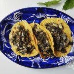 Huitlacoche tacos mexico corn fungus