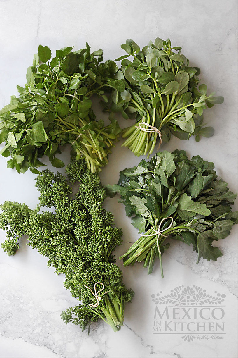 Mexican wild greens
